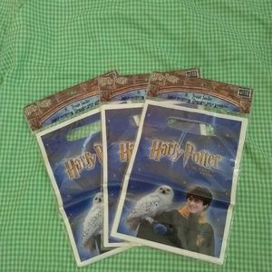 Harry Potter, Sorcerer's Stone Party Treat Sacks
